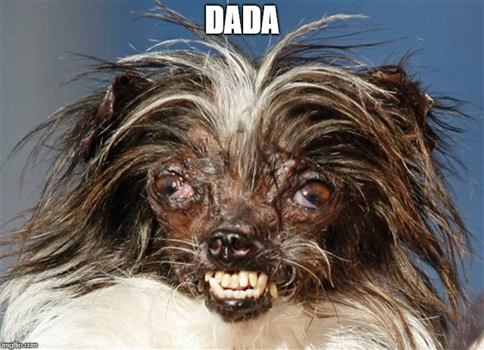 ugly dog | DADA | image tagged in ugly dog | made w/ Imgflip meme maker