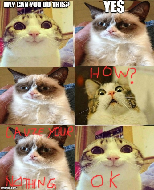 grumpy smile | HAY CAN YOU DO THIS? YES | image tagged in memes,grumpy cat | made w/ Imgflip meme maker