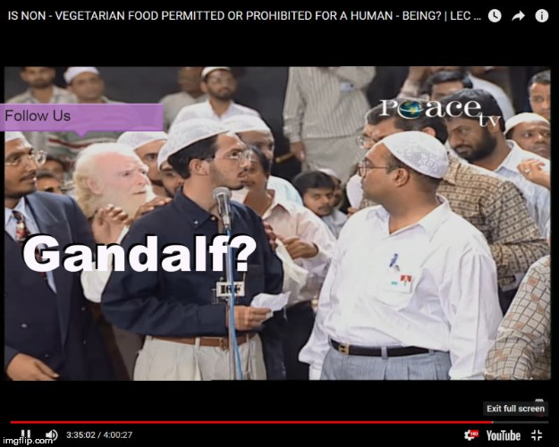 Gandalf | image tagged in gandalf,islam,india | made w/ Imgflip meme maker