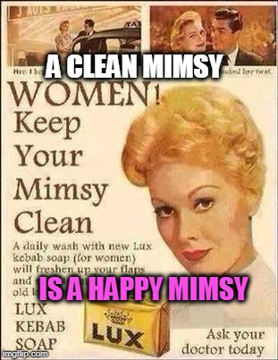 A CLEAN MIMSY IS A HAPPY MIMSY | image tagged in clean,vagina,bath,happy | made w/ Imgflip meme maker
