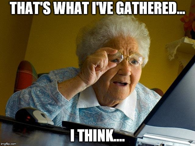 Grandma Finds The Internet Meme | THAT'S WHAT I'VE GATHERED... I THINK.... | image tagged in memes,grandma finds the internet | made w/ Imgflip meme maker
