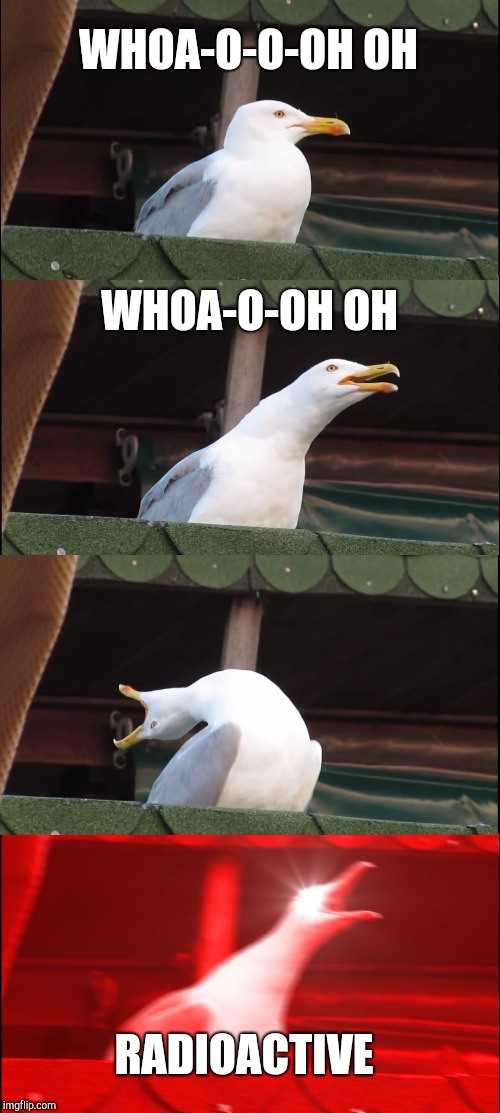 Inhaling Seagull Meme | WHOA-O-O-OH OH WHOA-O-OH OH RADIOACTIVE | image tagged in memes,inhaling seagull | made w/ Imgflip meme maker