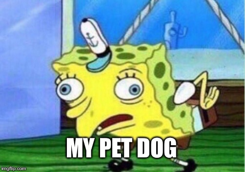 Mocking Spongebob Meme | MY PET DOG | image tagged in memes,mocking spongebob | made w/ Imgflip meme maker