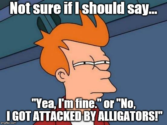 "Futurama Fry Meme | Not sure if I should say... ""Yea, I'm fine."" or ""No, I GOT ATTACKED BY ALLIGATORS!"" 