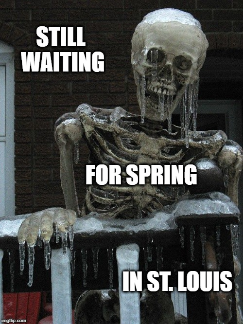 No Spring | STILL WAITING IN ST. LOUIS FOR SPRING | image tagged in winter skeleton,winter,spring | made w/ Imgflip meme maker