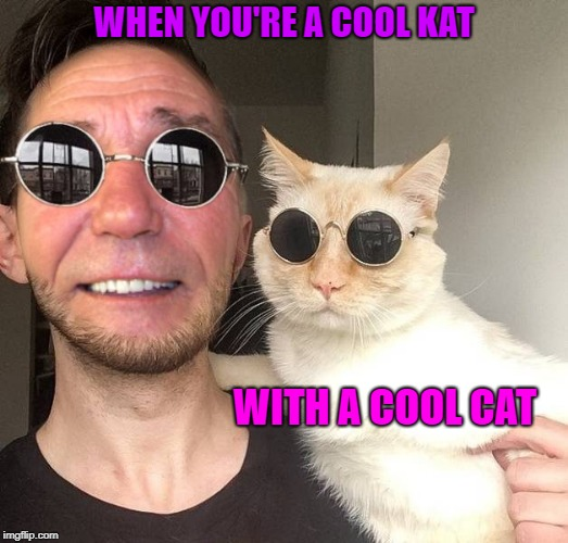 when you're a cool kat | WHEN YOU'RE A COOL KAT WITH A COOL CAT | image tagged in cool cat,coollew | made w/ Imgflip meme maker