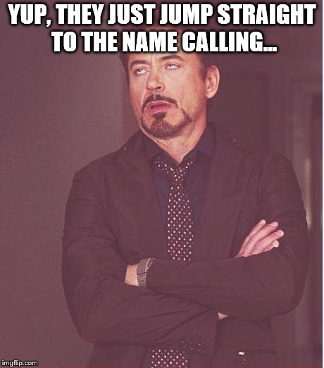 Face You Make Robert Downey Jr Meme | YUP, THEY JUST JUMP STRAIGHT TO THE NAME CALLING... | image tagged in memes,face you make robert downey jr | made w/ Imgflip meme maker