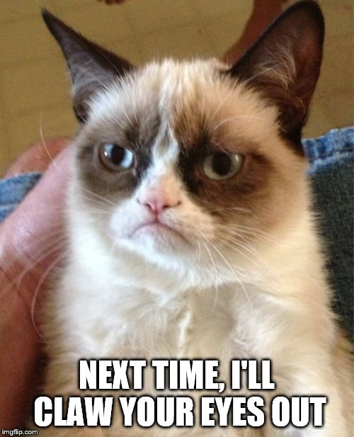 Grumpy Cat Meme | NEXT TIME, I'LL CLAW YOUR EYES OUT | image tagged in memes,grumpy cat | made w/ Imgflip meme maker