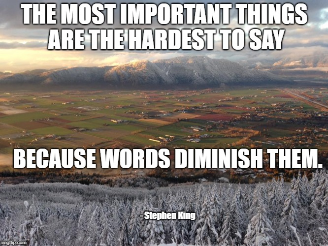 THE MOST IMPORTANT THINGS ARE THE HARDEST TO SAY BECAUSE WORDS DIMINISH THEM. - Stephen King | image tagged in stephen king,life,important,words of wisdom | made w/ Imgflip meme maker