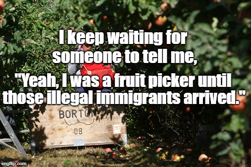 "fruit picker | I keep waiting for someone to tell me, those illegal immigrants arrived."" ""Yeah, I was a fruit picker until 