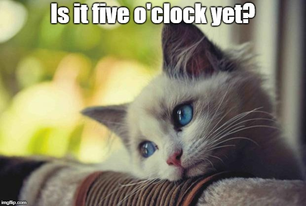 Fridays...*sigh* | Is it five o'clock yet? | image tagged in sad kitten,friday | made w/ Imgflip meme maker