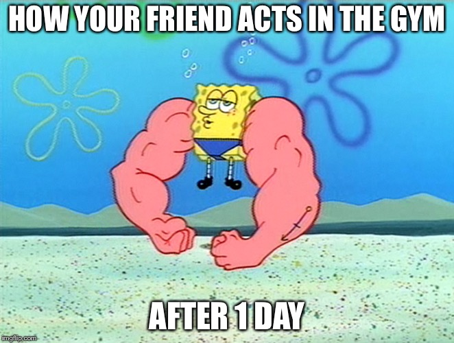HOW YOUR FRIEND ACTS IN THE GYM AFTER 1 DAY | image tagged in sponge bob flex | made w/ Imgflip meme maker