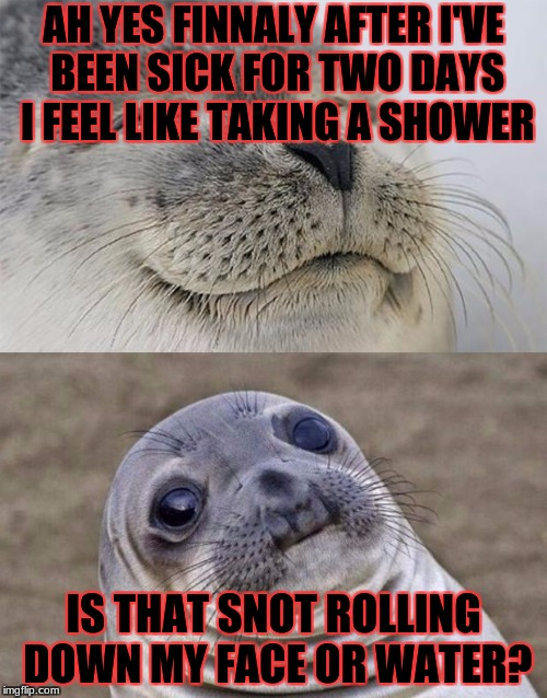 Short Satisfaction VS Truth Meme | AH YES FINNALY AFTER I'VE BEEN SICK FOR TWO DAYS I FEEL LIKE TAKING A SHOWER IS THAT SNOT ROLLING DOWN MY FACE OR WATER? | image tagged in memes,short satisfaction vs truth,masqurade_,meme,the sad truth,when you realize | made w/ Imgflip meme maker