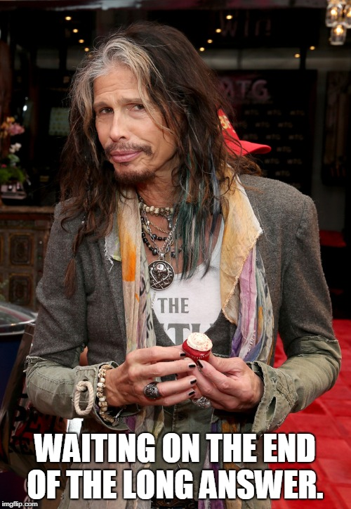 Steven Tyler | WAITING ON THE END OF THE LONG ANSWER. | image tagged in steven tyler | made w/ Imgflip meme maker