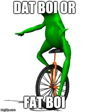 Dat Boi | DAT BOI OR FAT BOI | image tagged in memes,dat boi | made w/ Imgflip meme maker