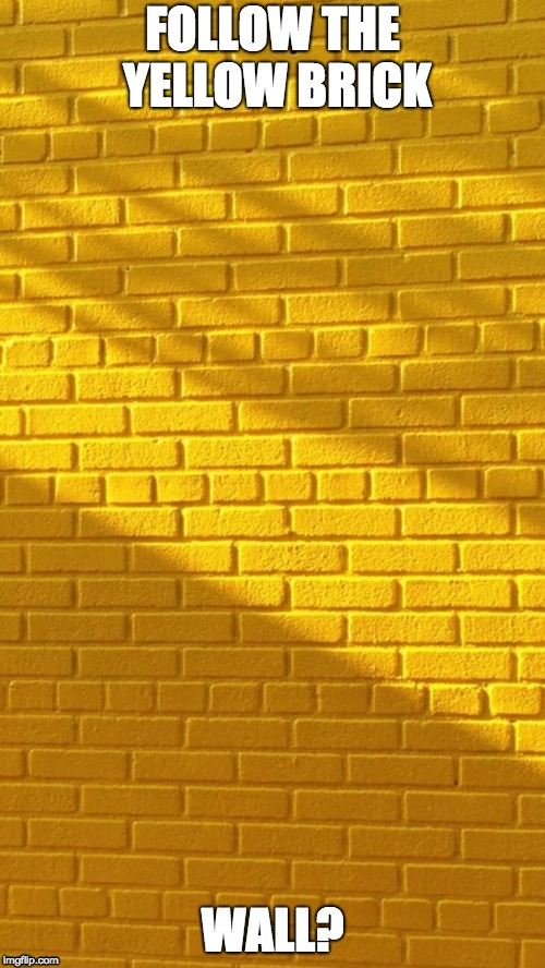 FOLLOW THE YELLOW BRICK WALL? | image tagged in funny,funny memes,wizard of oz | made w/ Imgflip meme maker