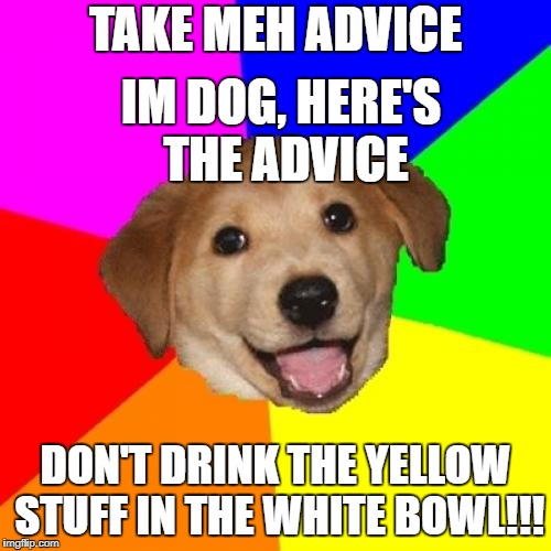 Advice Dog Meme | TAKE MEH ADVICE DON'T DRINK THE YELLOW STUFF IN THE WHITE BOWL!!! IM DOG, HERE'S THE ADVICE | image tagged in memes,advice dog | made w/ Imgflip meme maker