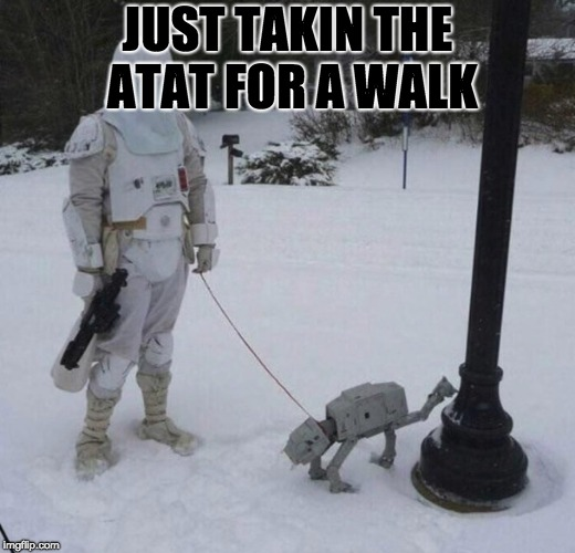 JUST TAKIN THE ATAT FOR A WALK | image tagged in storm trooper | made w/ Imgflip meme maker