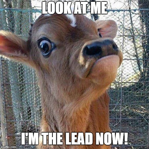 LOOK AT ME I'M THE LEAD NOW! | image tagged in look at me | made w/ Imgflip meme maker