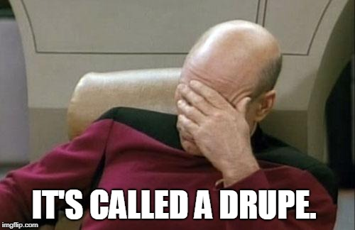 Captain Picard Facepalm Meme | IT'S CALLED A DRUPE. | image tagged in memes,captain picard facepalm | made w/ Imgflip meme maker