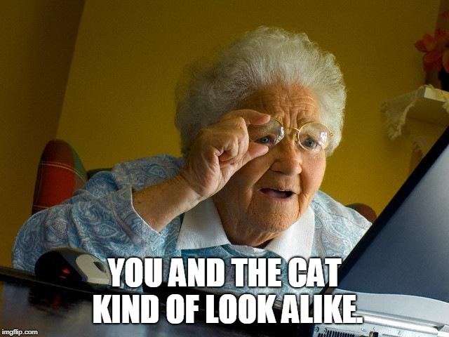 Grandma Finds The Internet Meme | YOU AND THE CAT KIND OF LOOK ALIKE. | image tagged in memes,grandma finds the internet | made w/ Imgflip meme maker