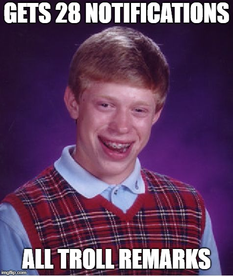 Bad Luck Brian Meme | GETS 28 NOTIFICATIONS ALL TROLL REMARKS | image tagged in memes,bad luck brian | made w/ Imgflip meme maker