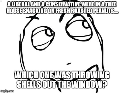 Nuts! |  A LIBERAL AND A CONSERVATIVE WERE IN A TREE HOUSE SNACKING ON FRESH ROASTED PEANUTS.... WHICH ONE WAS THROWING SHELLS OUT THE WINDOW? | image tagged in memes,question rage face,original meme,original | made w/ Imgflip meme maker