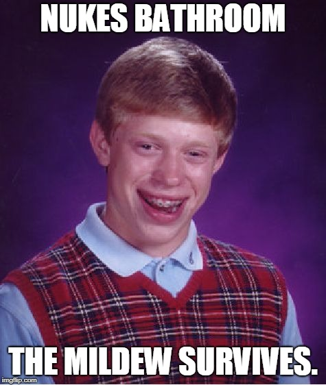 Bad Luck Brian Meme | NUKES BATHROOM THE MILDEW SURVIVES. | image tagged in memes,bad luck brian | made w/ Imgflip meme maker