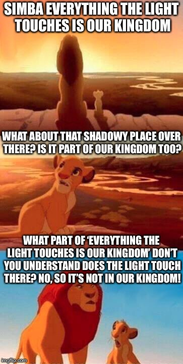 The Kingdom in Lion King | SIMBA EVERYTHING THE LIGHT TOUCHES IS OUR KINGDOM WHAT ABOUT THAT SHADOWY PLACE OVER THERE? IS IT PART OF OUR KINGDOM TOO? WHAT PART OF 'EVE | image tagged in lion king | made w/ Imgflip meme maker