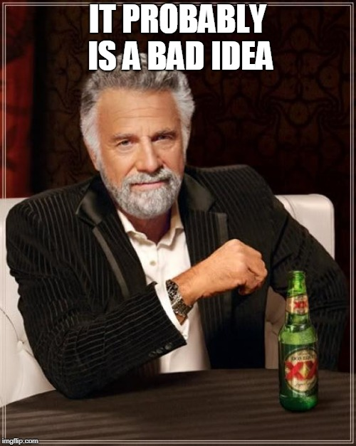 The Most Interesting Man In The World Meme | IT PROBABLY IS A BAD IDEA | image tagged in memes,the most interesting man in the world | made w/ Imgflip meme maker
