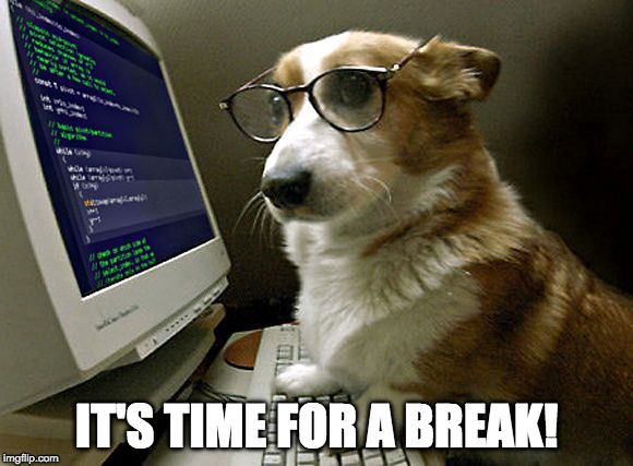 corgi hacker | IT'S TIME FOR A BREAK! | image tagged in corgi hacker | made w/ Imgflip meme maker