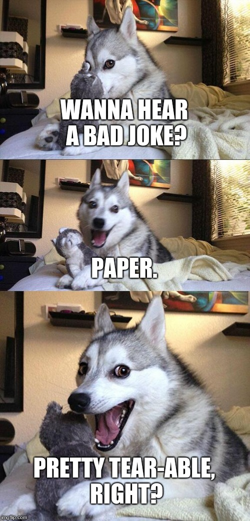 Bad Pun Dog Meme | WANNA HEAR A BAD JOKE? PAPER. PRETTY TEAR-ABLE, RIGHT? | image tagged in memes,bad pun dog | made w/ Imgflip meme maker