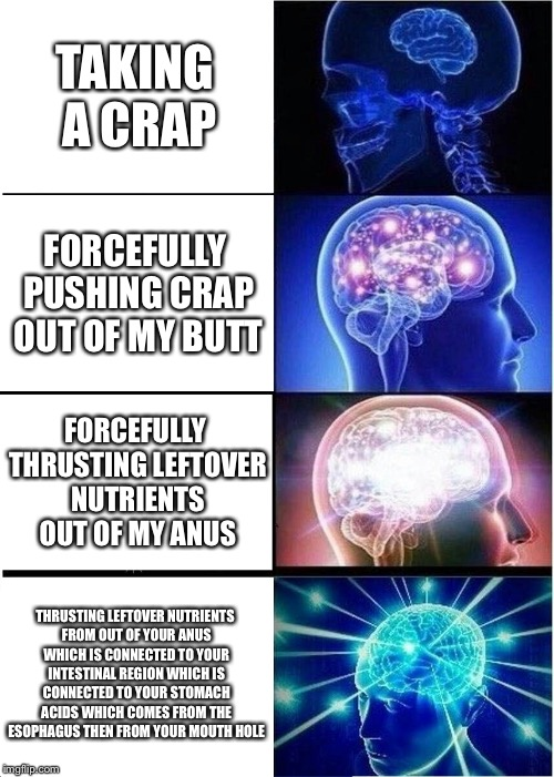 Expanding Brain Meme | TAKING A CRAP FORCEFULLY PUSHING CRAP OUT OF MY BUTT FORCEFULLY THRUSTING LEFTOVER NUTRIENTS OUT OF MY ANUS THRUSTING LEFTOVER NUTRIENTS FRO | image tagged in memes,expanding brain | made w/ Imgflip meme maker