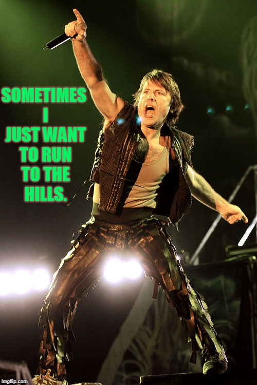 Bruce Dickinson | SOMETIMES I JUST WANT TO RUN TO THE HILLS. | image tagged in bruce dickinson | made w/ Imgflip meme maker