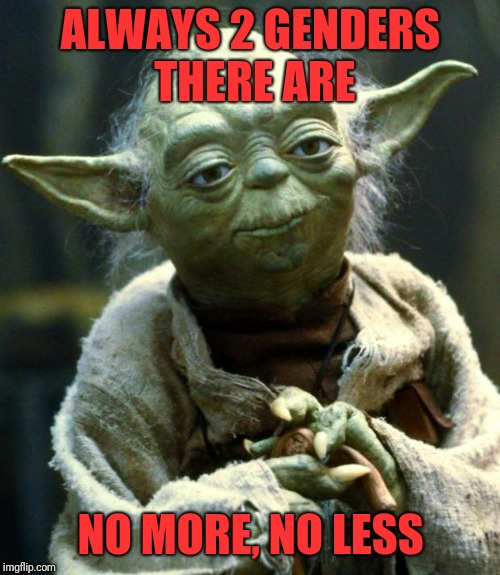 Star Wars Yoda Meme | ALWAYS 2 GENDERS THERE ARE NO MORE, NO LESS | image tagged in memes,star wars yoda | made w/ Imgflip meme maker