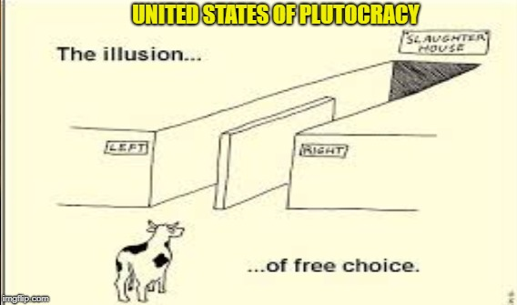 A Delusion of Democracy |  UNITED STATES OF PLUTOCRACY | image tagged in gop,dems | made w/ Imgflip meme maker