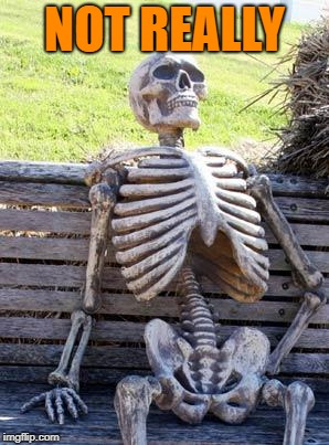 Waiting Skeleton Meme | NOT REALLY | image tagged in memes,waiting skeleton | made w/ Imgflip meme maker