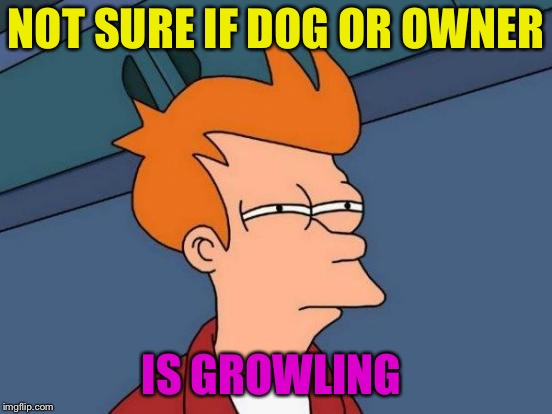 Futurama Fry Meme | NOT SURE IF DOG OR OWNER IS GROWLING | image tagged in memes,futurama fry | made w/ Imgflip meme maker