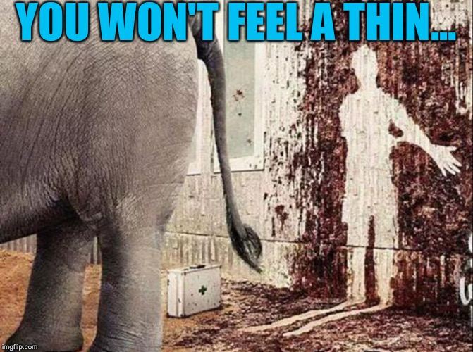 When you think your job is bad. | YOU WON'T FEEL A THIN... | image tagged in memes,funny,elephant,doctor | made w/ Imgflip meme maker