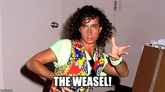Pauly Shore | THE WEASEL! | image tagged in pauly shore | made w/ Imgflip meme maker