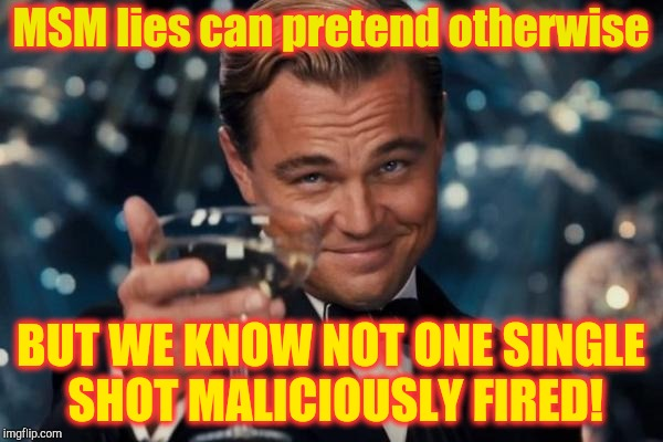 Leonardo Dicaprio Cheers Meme | MSM lies can pretend otherwise BUT WE KNOW NOT ONE SINGLE SHOT MALICIOUSLY FIRED! | image tagged in memes,leonardo dicaprio cheers | made w/ Imgflip meme maker