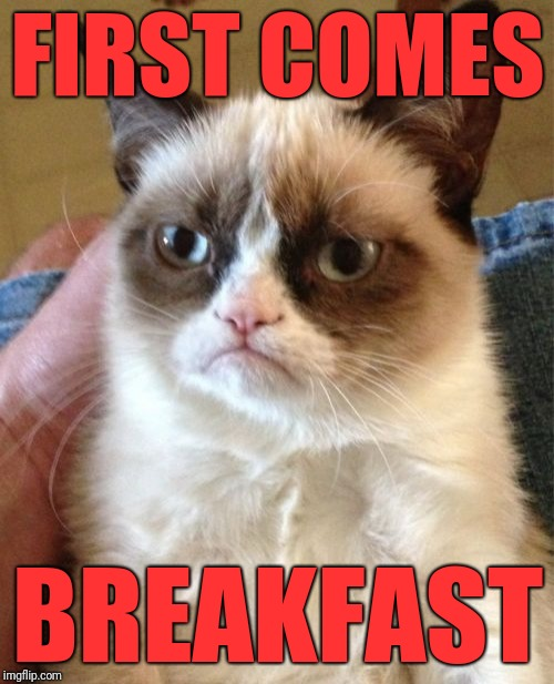 Grumpy Cat Meme | FIRST COMES BREAKFAST | image tagged in memes,grumpy cat | made w/ Imgflip meme maker