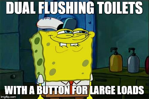 Dont You Squidward Meme | DUAL FLUSHING TOILETS WITH A BUTTON FOR LARGE LOADS | image tagged in memes,dont you squidward | made w/ Imgflip meme maker