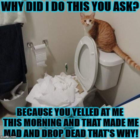 VINDICTIVE TURD | WHY DID I DO THIS YOU ASK? BECAUSE YOU YELLED AT ME THIS MORNING AND THAT MADE ME MAD AND DROP DEAD THAT'S WHY! | image tagged in vindictive turd | made w/ Imgflip meme maker
