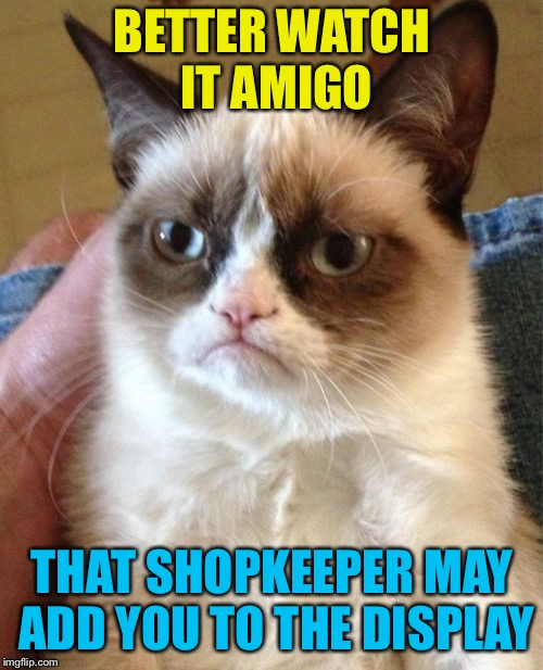 Grumpy Cat Meme | BETTER WATCH IT AMIGO THAT SHOPKEEPER MAY ADD YOU TO THE DISPLAY | image tagged in memes,grumpy cat | made w/ Imgflip meme maker