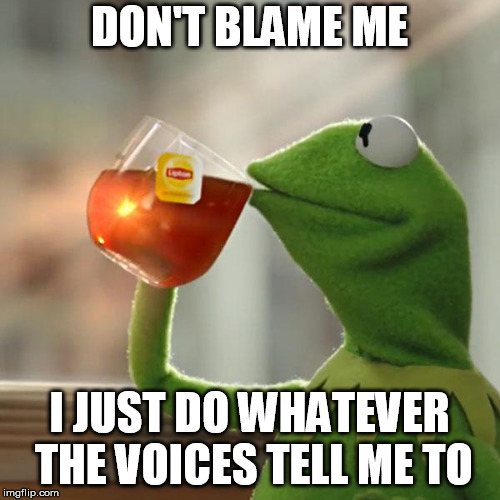 But Thats None Of My Business Meme | DON'T BLAME ME I JUST DO WHATEVER THE VOICES TELL ME TO | image tagged in memes,but thats none of my business,kermit the frog | made w/ Imgflip meme maker