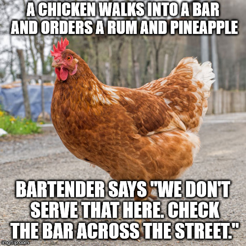"A CHICKEN WALKS INTO A BAR AND ORDERS A RUM AND PINEAPPLE BARTENDER SAYS ""WE DON'T SERVE THAT HERE. CHECK THE BAR ACROSS THE STREET."" 