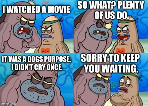A Dogs Purpose |  SO WHAT? PLENTY OF US DO. I WATCHED A MOVIE; IT WAS A DOGS PURPOSE. I DIDN'T CRY ONCE. SORRY TO KEEP YOU WAITING. | image tagged in memes,how tough are you | made w/ Imgflip meme maker