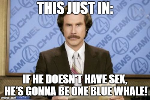 THIS JUST IN: IF HE DOESN'T HAVE SEX, HE'S GONNA BE ONE BLUE WHALE! | made w/ Imgflip meme maker