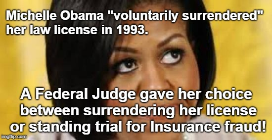 "Michelle Obama Lost Law License | Michelle Obama ""voluntarily surrendered"" her law license in 1993. A Federal Judge gave her choice between surrendering her license or standi 